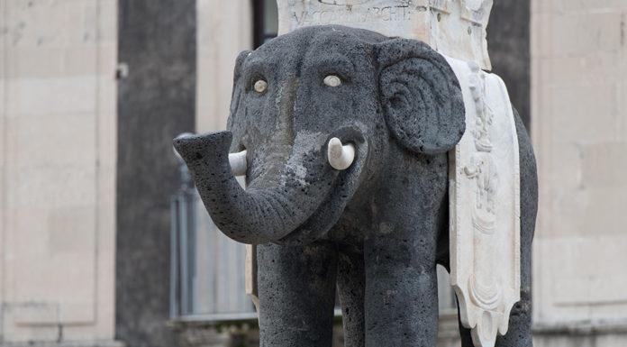Символ Катании слон